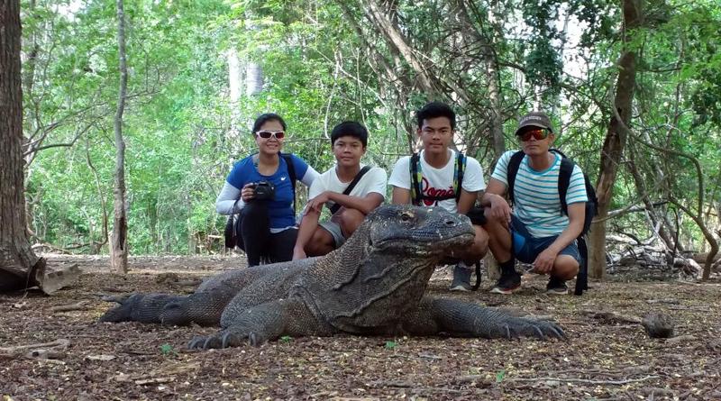 Komodo Dragon Tours From Lombok