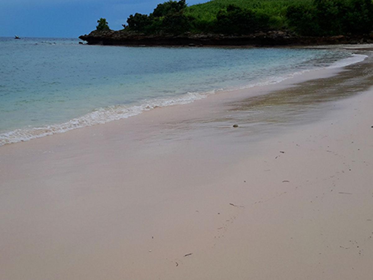 Tour pink beach Lombok