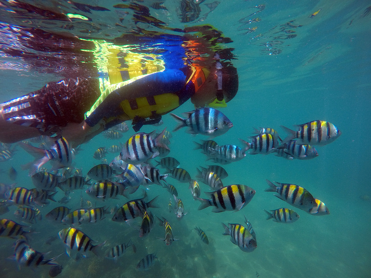Snorkeling Gili Nanggu Lombok
