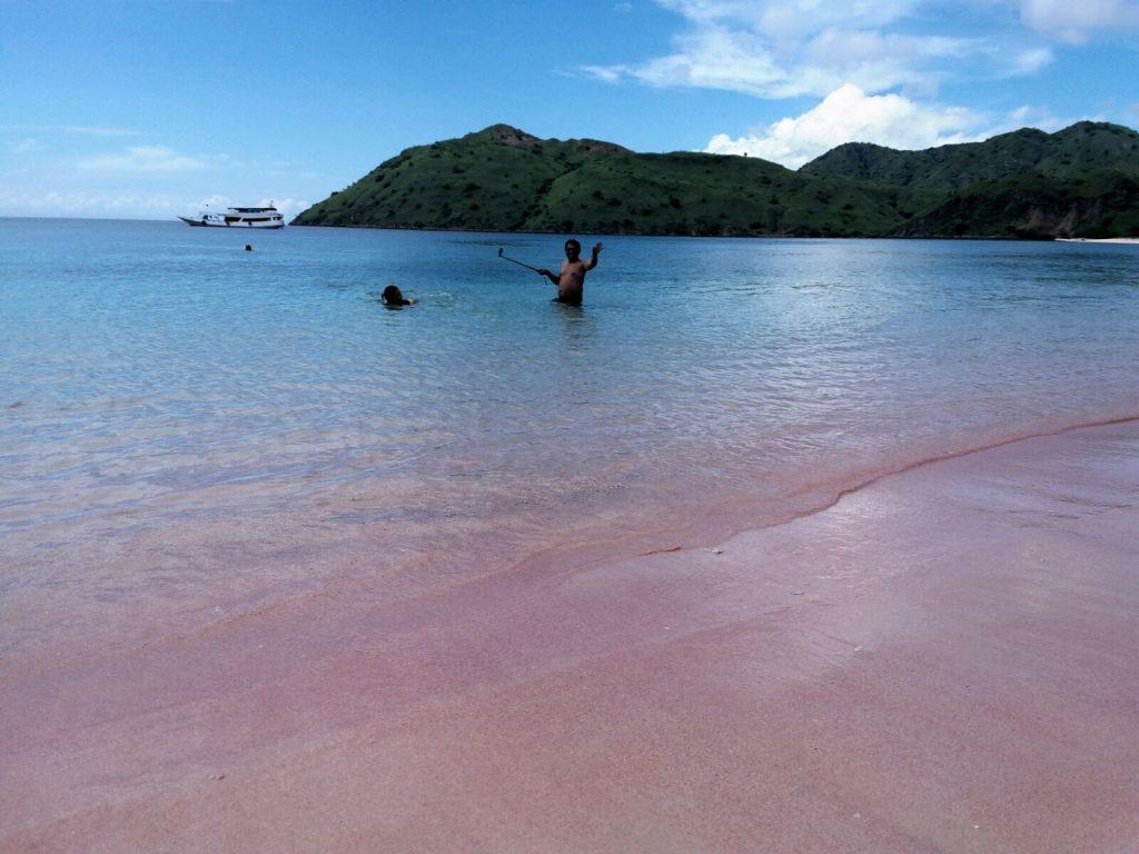 Pink beach - Komodo island