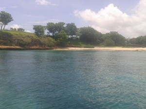 Pink-Beach (5)