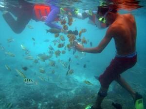 Snorkeling-tour-5